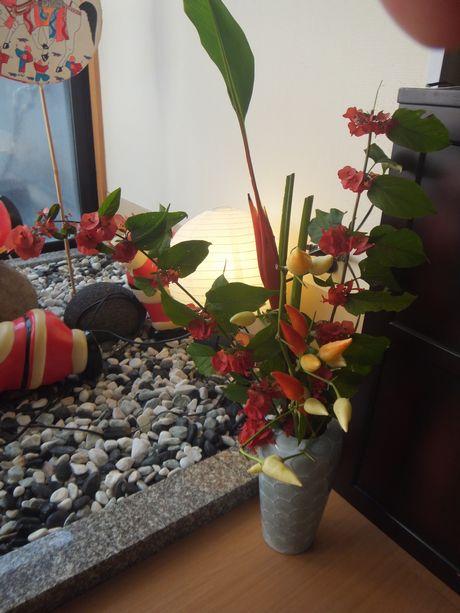 綺麗な花・・